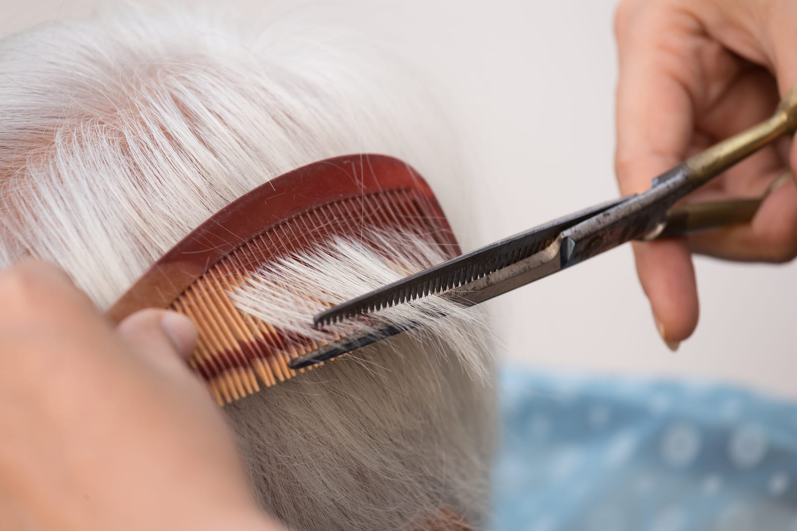 Hair stylist cutting senior woman's gray hair ** Note: Shallow depth of field